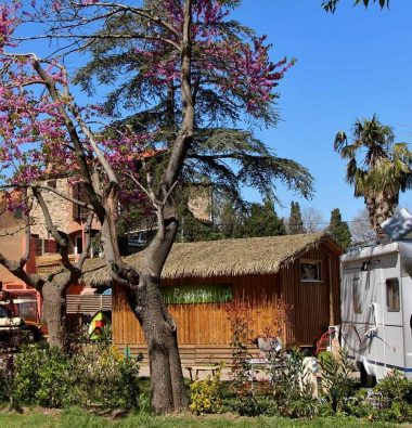 Acceuil Camping les Amandiers