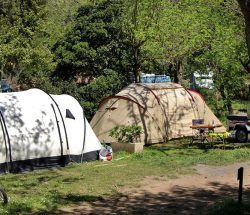 emplacement tente Camping Les Amandiers